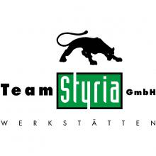 Team Styria